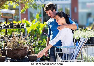 盆栽, 恋人, 買い物, 若い