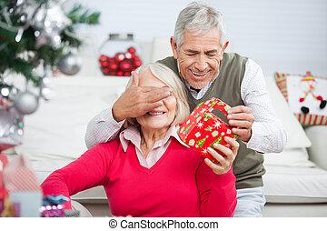 目, カバー, 寄付, 女性, 間, シニア, クリスマスプレゼント, 人