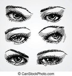 目, コレクション