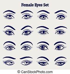 目, セット, スケッチ, 女性