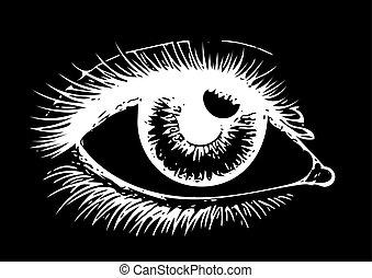 目, 女性の目, 人間, -, の上, バックグラウンド。, 黒, vector., 終わり, art., logo., 目, eye.
