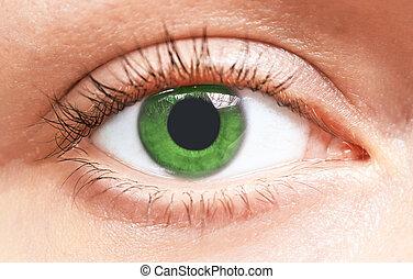 目, 緑, 女の子