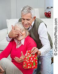 目, 贈り物, カバー, 寄付, 女性, 間, シニア, クリスマス, 人
