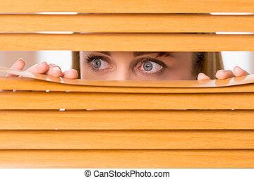 眼睛, 婦女, 擦傷, 向上, 臉, 看, 外面, 女性, 關閉, blinds.