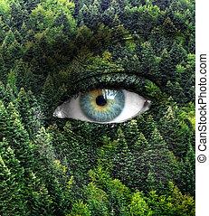 眼睛, 概念, 自然, -, 綠色的森林, 人類, 之外