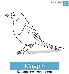 着色, かささぎ, 本, ベクトル, 学びなさい, 鳥