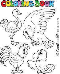 着色 本, 鳥, イメージ, 1