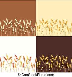 矢量, 彙整, ......的, seamless, 重复, 小麥, 背景
