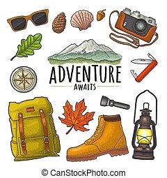 矢量, 戶外, 旅行, 葡萄酒, 雕刻, recreation., 集合