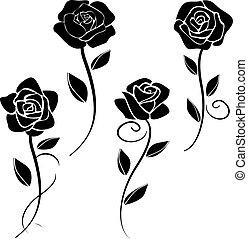 矢量, 玫瑰, 黑色半面畫像,  2