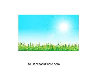 矢量, 綠色的草, 以及藍色, 天空