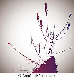 矢量, 花, 春天, 色彩丰富