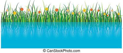 矢量, 草, 插圖