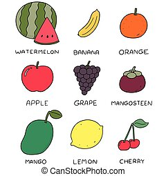 矢量, 集合, ......的, 水果