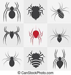 矢量, 集合, 蜘蛛, 圖象