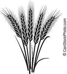 矢量, 黑色 和 白色, 束, 小麥, 耳朵