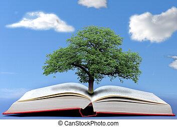 知識 の 木