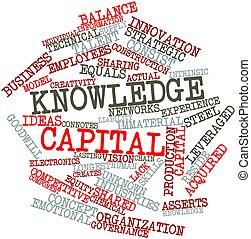 知識, 資本