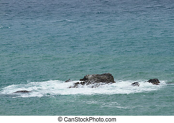 石头, 在上, the, 海
