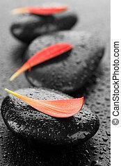 石头, spa, zen, 潮湿