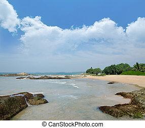 石頭, 在, the, 波浪, 上, 海洋, 海岸