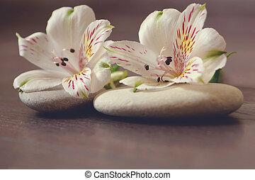 石, うそ, alstroemeria, 木製である, 準備, エステ, 白い花, プロシージャ, マッサージ, 表面