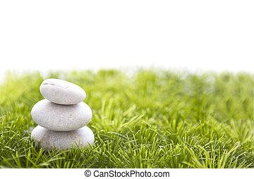 石, そして, 草, 隔離された, 白, バックグラウンド。
