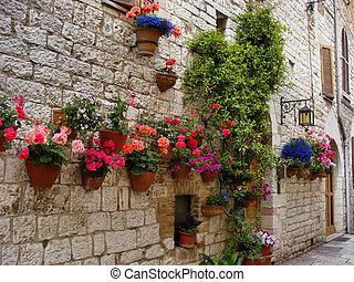 石, イタリア, 中世, カラフルである, 壁, ライニング, 花