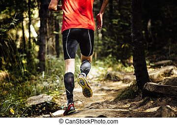 石, ランナー, 動くこと, 森林, マラソン