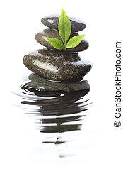 石, 中に, 水