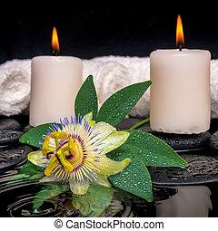 石, 概念, 低下, 反射, 蝋燭, エステ, 禅, 葉, 緑水, タオル, さざ波を起こされた, クローズアップ, 花, passiflora