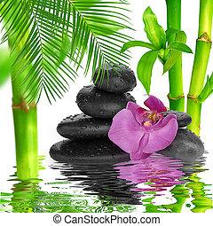 石, 水, 黒い背景, エステ