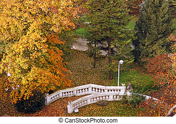 石, 階段, 季節, 公園, 秋, 白