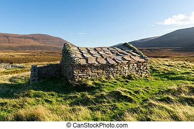 石, orkney, スコットランド, 湾, 家, 伝統的である, rackwick