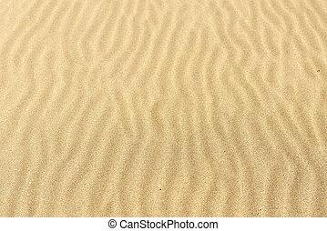 砂の質, へこんだ, 波, の, ∥, 打撃, の, ∥, wind.