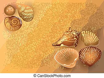 砂の 海, 殻