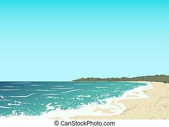 砂ビーチ, 海洋