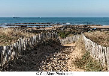 砂丘, 道, ∥に向かって∥, 浜