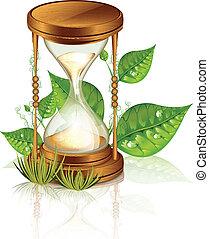 砂時計, 植物
