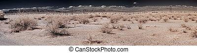 砂漠, 村