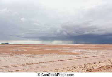 砂漠, 雨