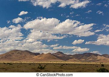 砂漠, sonora, メキシコ\