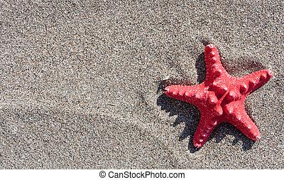 砂, 星, 海, 背景, 赤
