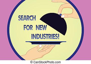 研究する, 給仕, ビジネス, プラター, モデル, 写真, 提示, 捜索しなさい, 分析, 執筆, メモ, 他, lid., industries., 手, showcasing, 新しい, 胡, トレー, ファインド, 持ち上がること