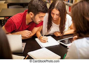 研究グループ, すること, 宿題