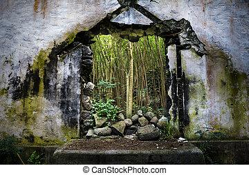 破坏, 教堂, 在中, 夏威夷