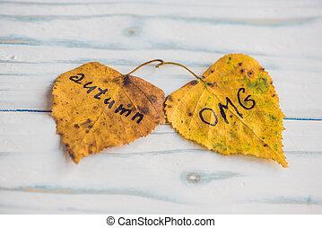 碑文, 葉, 木製である, 黄色, 秋, 緑の背景, 古い