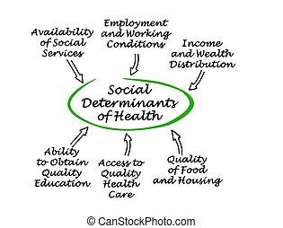 社会, determinants, 健康