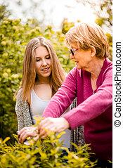 祖母, 孫, 園芸