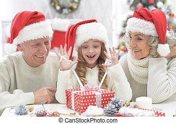 祖父母, 祝う, 孫, 肖像画, クリスマス, 幸せ